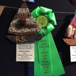 2015 After School Project @ RI Flower Show