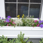 2017 June 20 container - window box contest